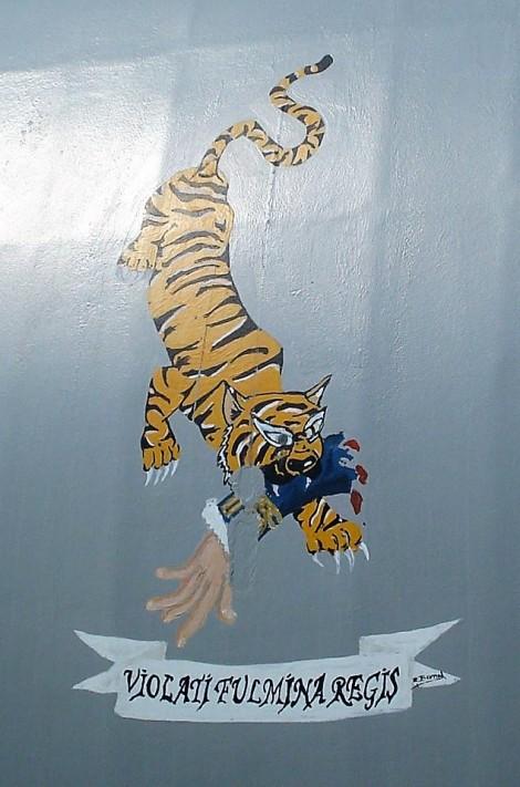 Tigre Nelson Tenerife (1)